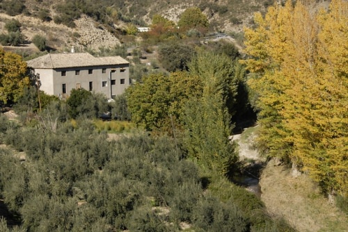 Montefrio Mill