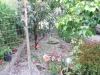 Manageable Garden