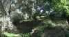 thumb_1288_garden.jpg