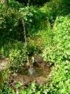 thumb_1498_p1050688(1)(1).jpg