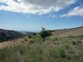 Ruin/Land for sale in Contraviesa nr. Albondón, Spain