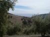 Land & Views