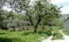 thumb_936_olivesandalmonds,lasbarreras.jpg